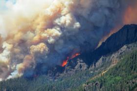 West Fork Fire makes a run up Sheep Mountain, June 23, 2013