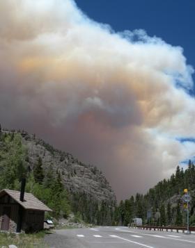 West Fork Fire, June, 2013