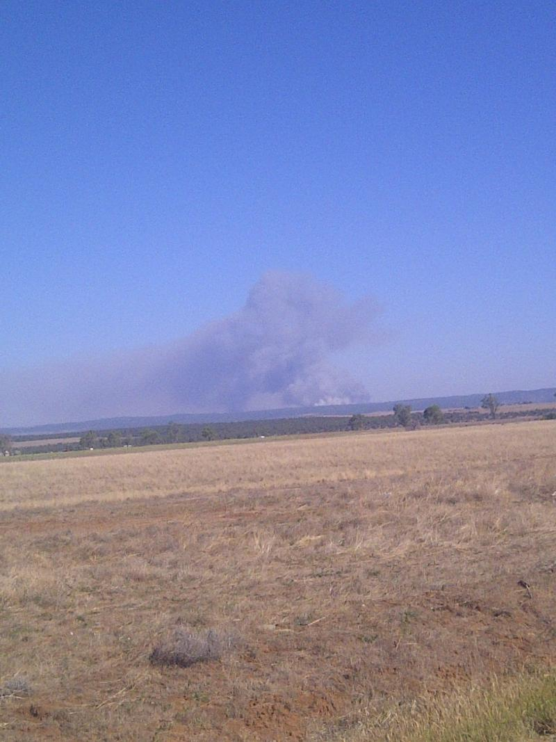 Weber Fire as seen from Red Mesa, CO  9:30 am Monday, 6/25/12