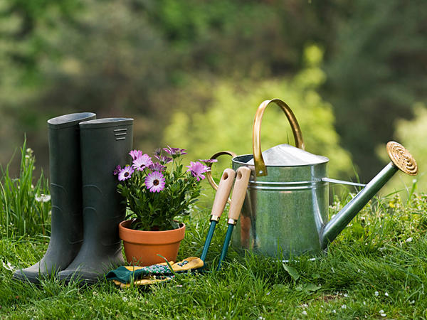 good to grow christmas gifts for gardeners