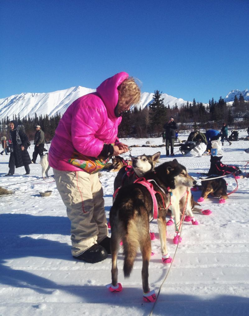 DeeDee Jonrowe greets her dogs after they arrive in Rainy Pass