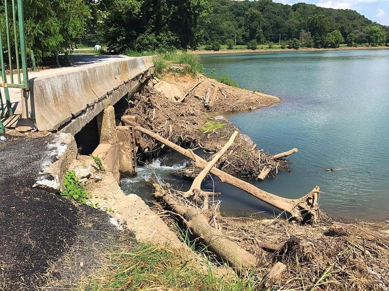 Fallen trees and debris piled up against the dam at Lake Bella Vista early this year.