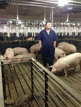 Inside C & H Hog Farms near Mount Judea