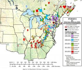 Map showing instances of the WNS fungus since 2006