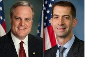 Mark Pryor Tom Cotton Senate