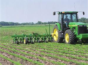 Farmer working with row crops.