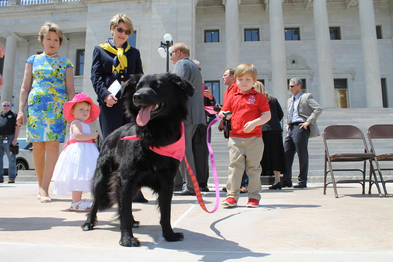 Arkansas First Lady Susan Hutchinson (left) admires Paws in Prison ambassador dog Chloe, who is battling cancer, and was brought to the Capitol for Friday's program.