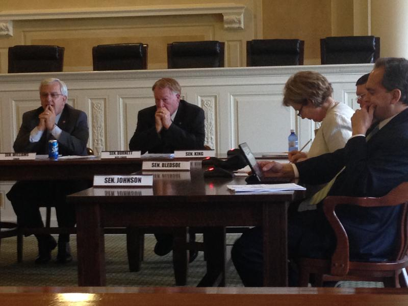 Senate State Agencies Committee before a split vote on the primary election bill.