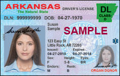 Sample of Arkansas Driver's License.