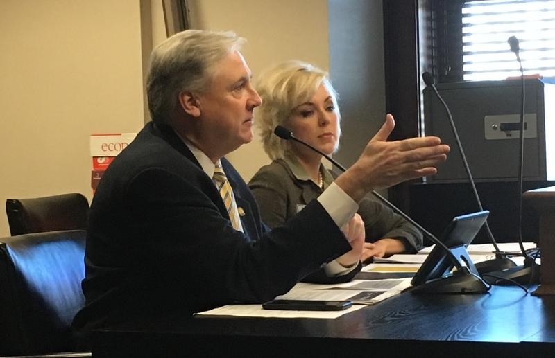 Rep. Mark Lowery (R-Maumelle) and Arkansas Department of Higher Education Director Maria Markham at a committee hearing. File photo 2017.