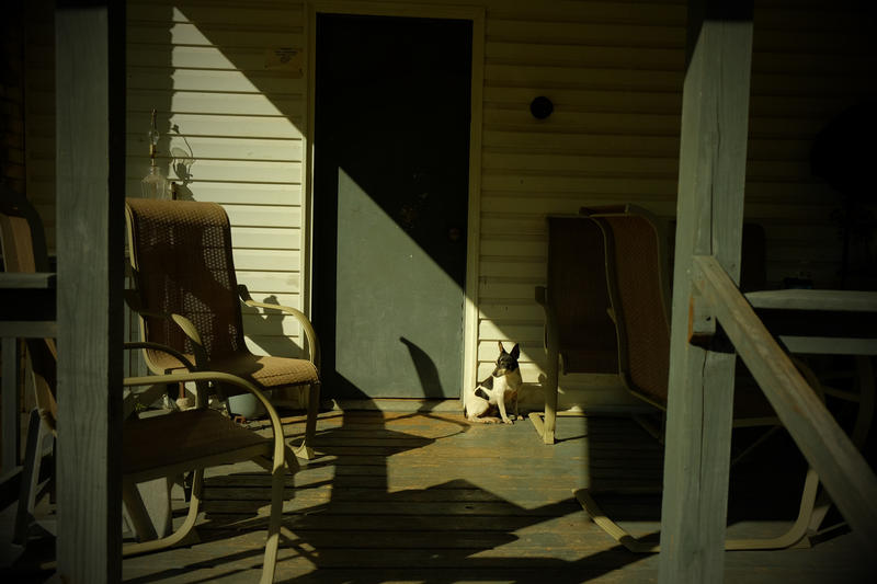 """One of the photographs featured in the exhibit """"Not Forgotten: An Arkansas Family Album."""""""