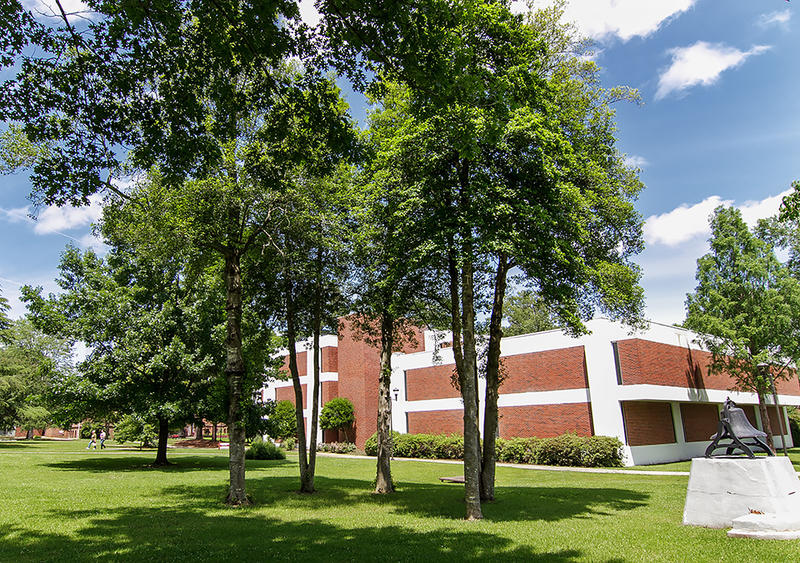 In 1919, this ring of holly trees was planted as a living memorial to honor Henderson students and a teacher killed during World War I.