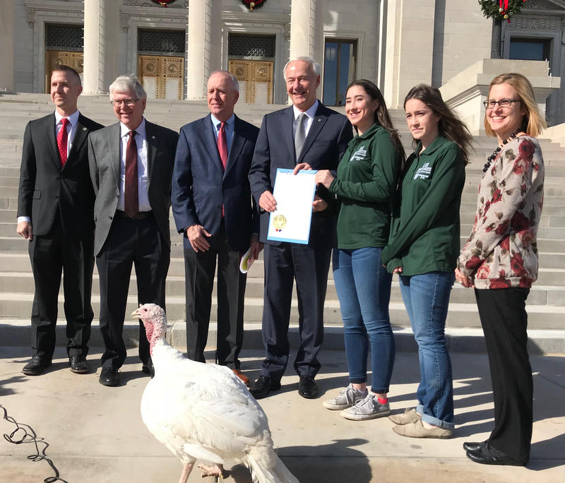 thanksgiving governor asa hutchinson turkey agriculture