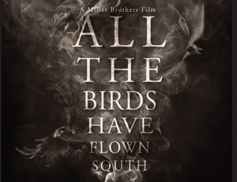 Film poster All The Birds Have Flown South