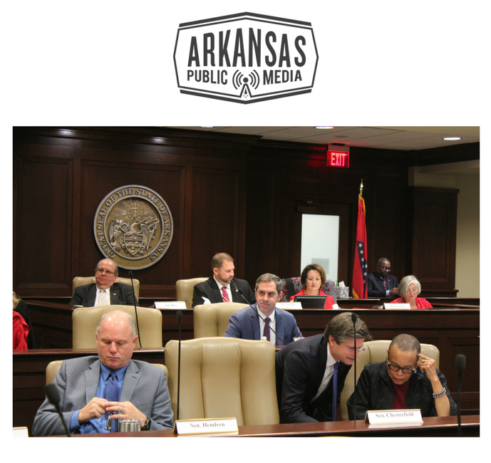 Members of the Arkansas Legislative Council consider the Arkansas State Police's draft plan for enhanced concealed carry licenses.