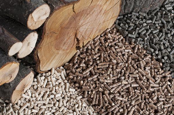 New arkansas industrial wood pellet mill raises green
