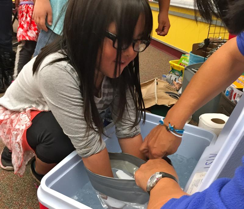 Visiting scientists show St. Paul students how blubber (or in this case, plastic bags lined with Crisco) helps marine mammals stay warm in cold water.