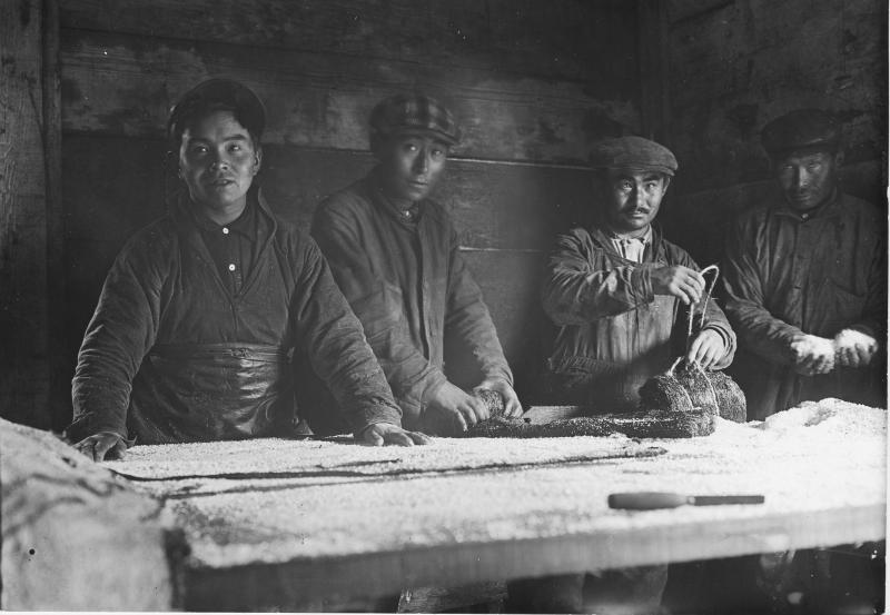 Aleut men salting seal skins in the 1920s.