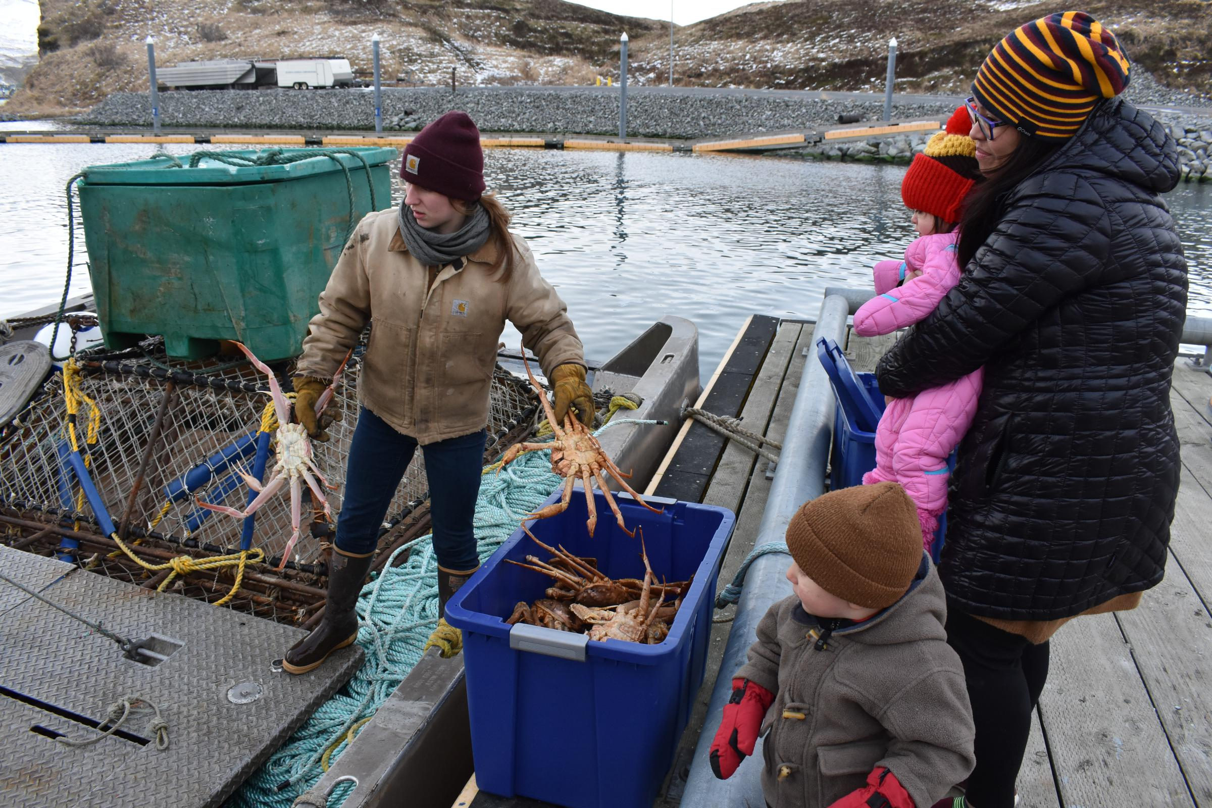 a843c171f6f Small Tanner Crab Fishery Closed For 2019