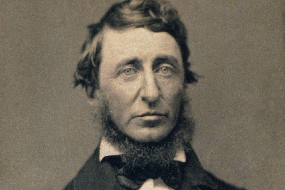 an opposition to henry david thoreaus position on news Passionately dedicated to the ideal that men of all races are equal, henry david thoreau is against slavery when he encounters henry williams, a runaway slave who is trying to escape to canada.