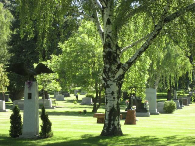 The groundwater plume was first discovered in an irrigation well at Mount Olivet Cemetery.