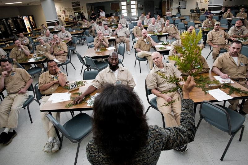Biologist Nalini Nadkarni presents a lecture on trees to prison inmates in Washington state.