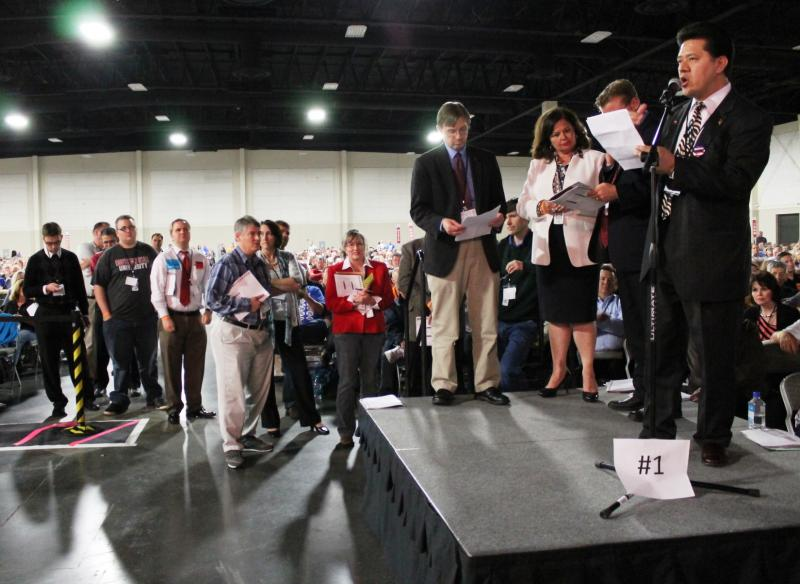 Republican delegates line up to speak about the party nomination process.