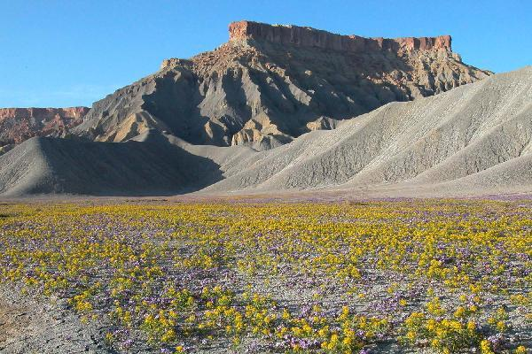 The Factory Butte area of Wayne County, Utah is covered by the Richfield Field Office Resource Management Plan