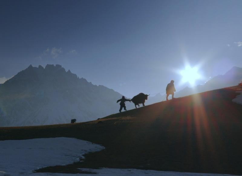 Scene from the documentary Happiness by Thomas Balmès
