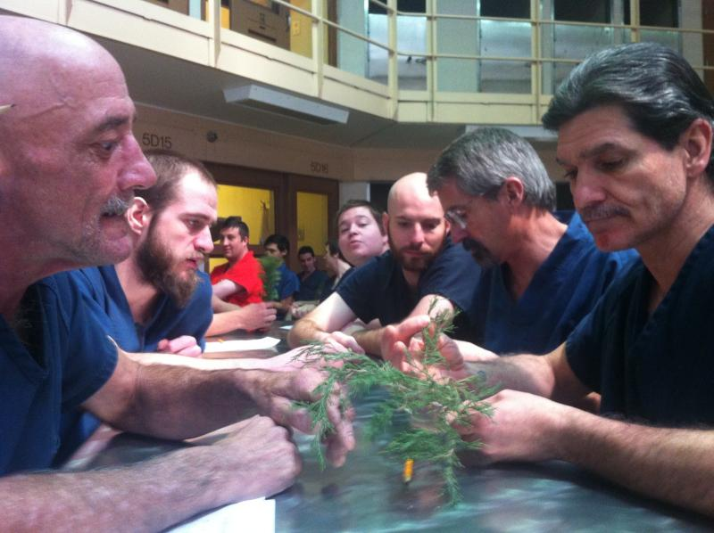 Inmates at the Salt Lake County Jail are taking a two-hour course on trees and rainforests.