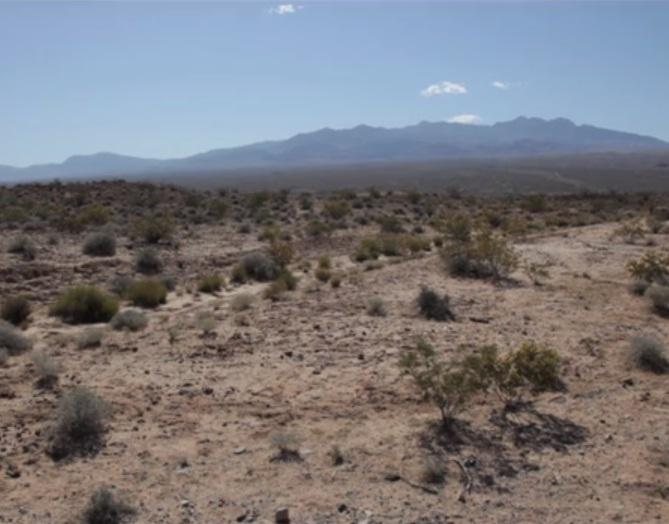 Southern Nevada public rangeland where the Bundy family has grazed cattle for generations