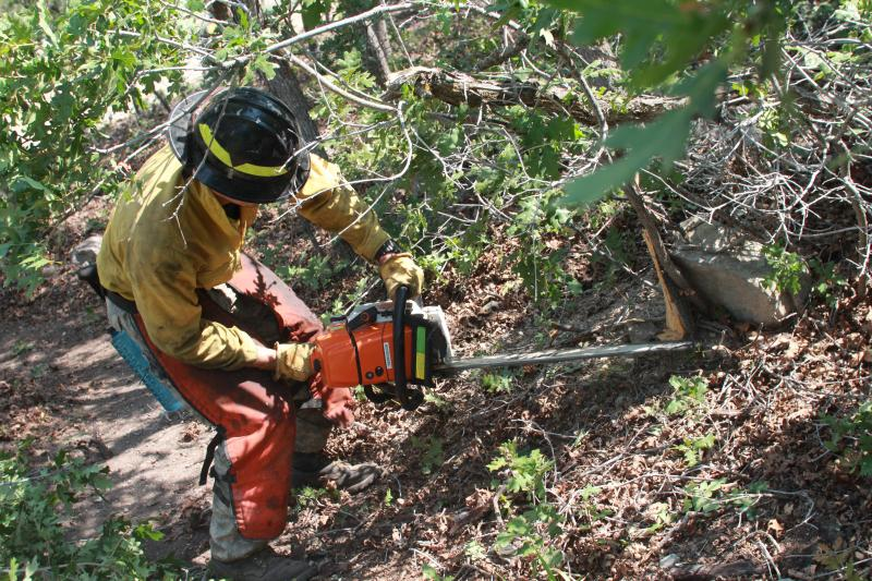 UFA fire fighter thin out oak brush on Traverse Mountain