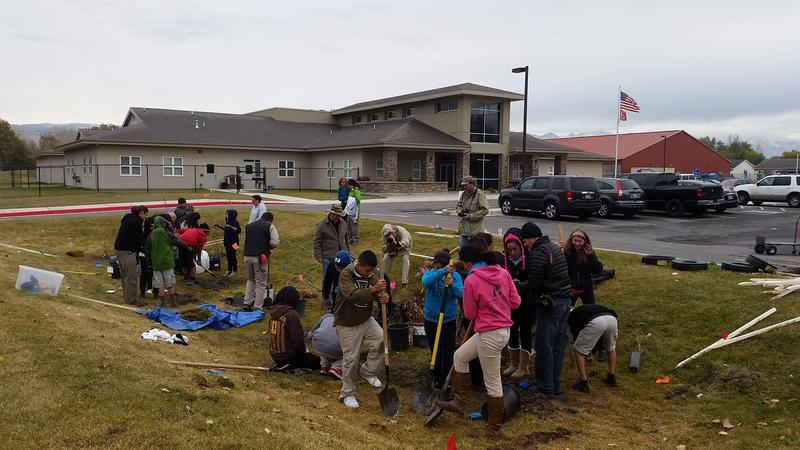 Students at Pacific Heritage Academy plant foliage near the school's storm drain.
