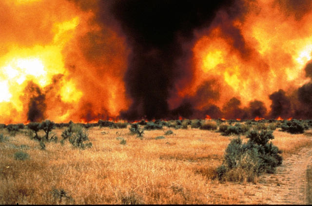 The weather yearound has a big impact on the wildfire season in Utah. May rains have boosted soil moisture this year.
