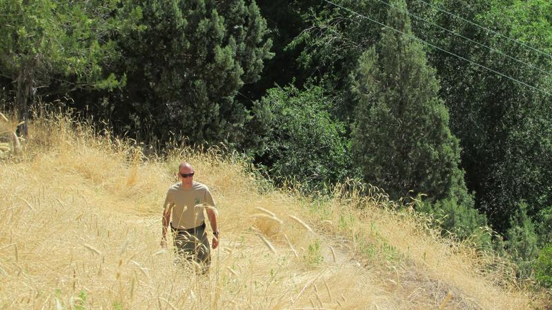 Jason Curry, spokesman for the Utah Division of Forestry, Fire and State Lands walks up a grassy hillside just above lush Memory Grove. Human activities account for more than half of Utah's fires most years, Curry says.