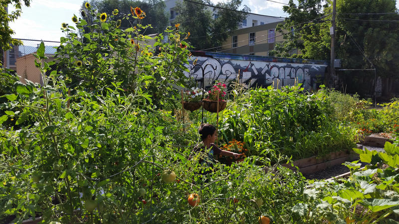 Off Broadway Community Garden is also an art space of the Utah Museum of Contemporary Art