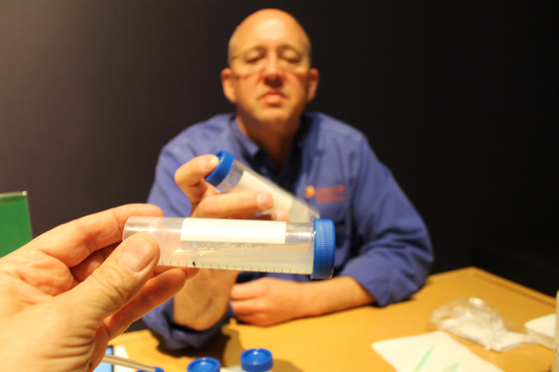 Reporter separating out DNA with the help of Mark at the NHMU.