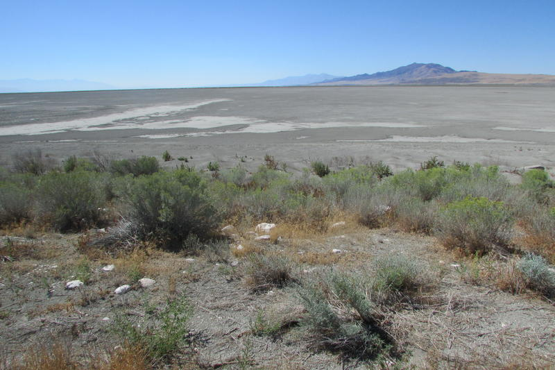Great Salt Lake water levels have declined with the hot, dry weather of the last few years in northern Utah. Impacts like these -- especially what they mean for health -- are the focus of a plan being developed by Salt Lake County.