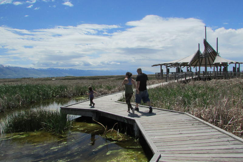 The Greenlease family explores the Great Salt Lake Shorelands Preserve. The Nature Conservancy has created a new guided tour for the cellphone.