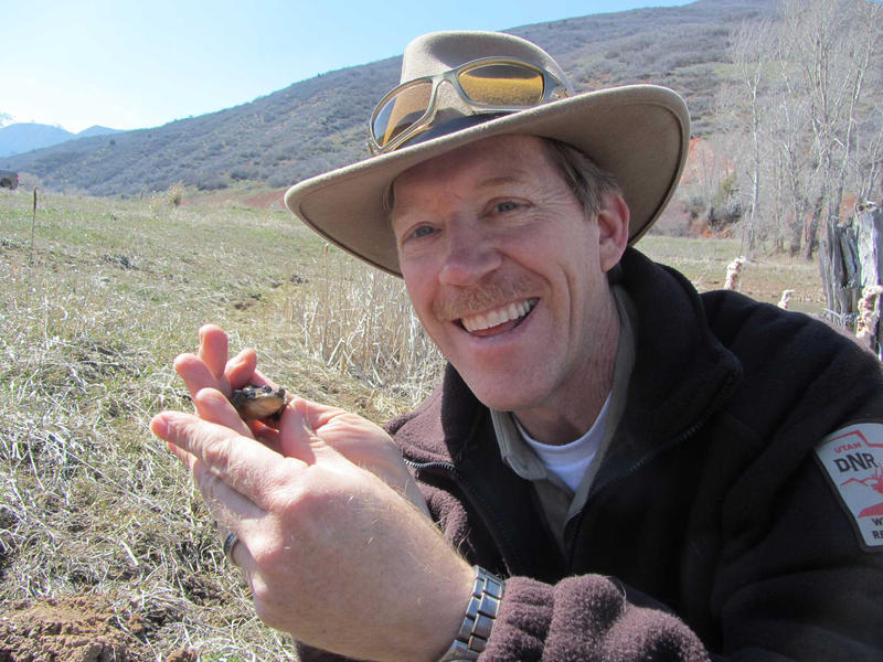 Utah Division of Wildlife Resources Director Greg Sheehan is headed to a new habitat, as deputy director of the U.S. Fish and Wildlife Service. Here, he's holding a frog.