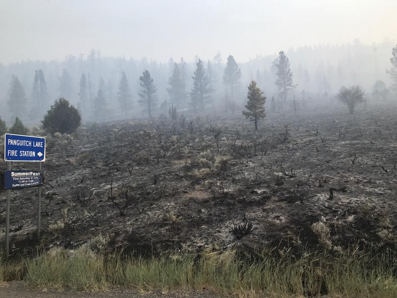 A picture of the patchy firescape within the Brian Head Fire. Officials say it could be weeks before the 49,000-acre wildfire is under control.
