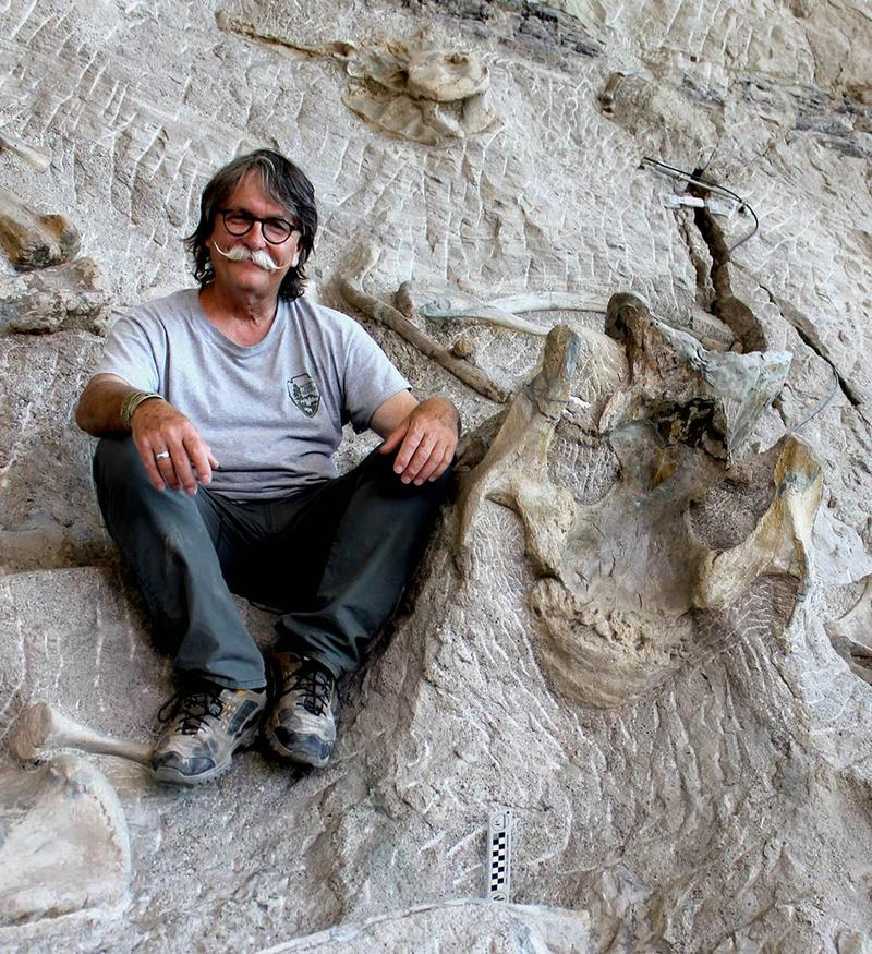 "Dan Chure retired from Dinosaur National Monument in eastern Utah after working there as a paleontologist for 38 years.  Here he is at the monument's ""Wall of Bones."" This weekend, he'll be at Dinofest in Salt Lake City."