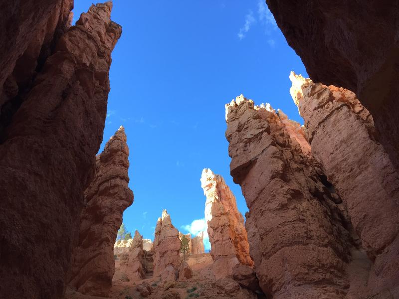 Hoodoo rock formations in Bryce Canyon National Park.