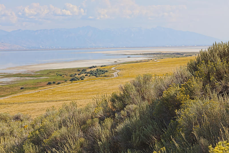 View of great salt lake from foothills.