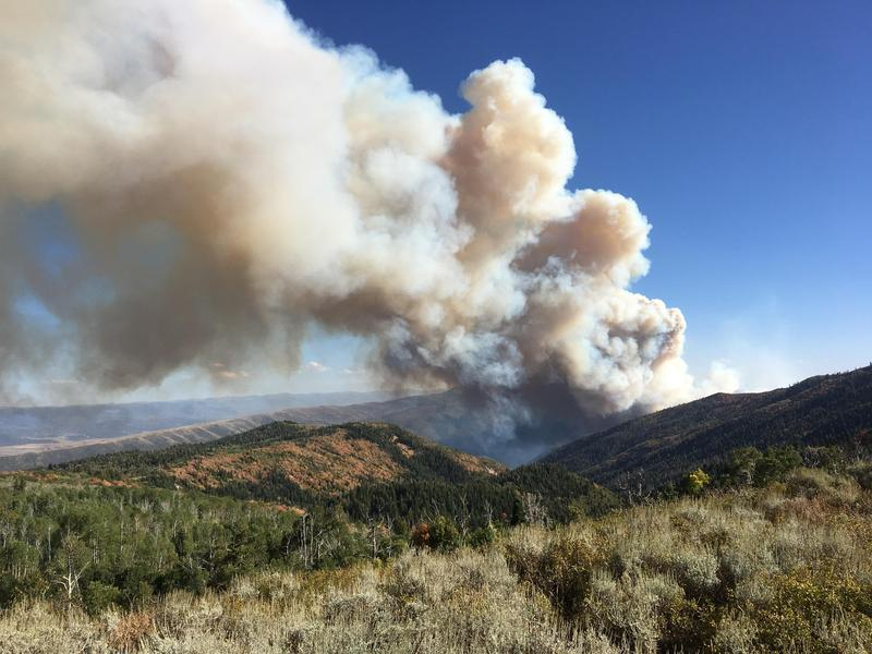 The Pole Creek Fire has burned nearly 99,000 acres. That's equal to 154 square miles.