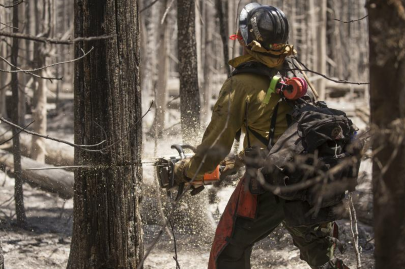 Photo of firefighter cutting burned tree.