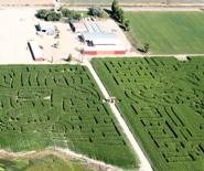 Charlie Black's farm in Syracuse, Utah