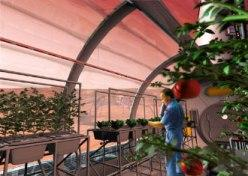 NASA's concept of a garden on Mars.