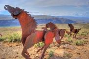 "Wild Horse Monument in Central Washington. Photo by <a href=""http://www.flickr.com/photos/ankneyd/516192680/\"" target=\""_blank\"">Don Ankney</a>"