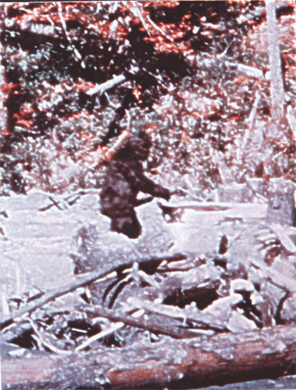 "This image of a purported Bigfoot comes from the famous <a href=""http://en.wikipedia.org/wiki/Patterson-Gimlin_film\"" target=\""_blank\"">Patterson-Gimlin film</a>."